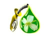 Биотопливо второго поколения
