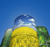 Особенности развития рынка биотоплива