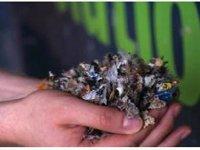 Переработка отходов в Липецке