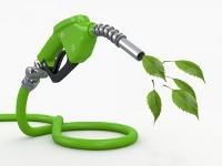 Перспективы индустрии биотоплива в России