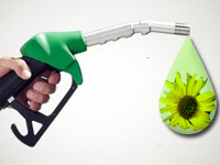 Компании по производству биотоплива вынуждены искать новых партнеров из-за падения цен на нефть