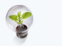 Государство простимулирует производство электроэнергии из возобновляемых источников