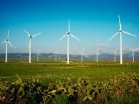 Строительство ветропарка вЗауралье откладывается из-за требований Минпромторга