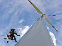 Компании IBM, Walmart и Dow Chemical объявили об увеличении доли ВИЭ в своём энергопотреблении
