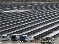 ВЯпонии построят уникальную электростанцию работающую набамбуке