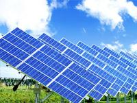 ВБитцевском лесу смонтируют солнечные батареи