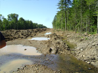 ВПодмосковье впервые займутся восстановлением экологии малых рек