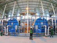 Новый завод попроизводству пеллет откроют вОнеге 14октября