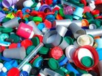 Обнаружена бактерия, питающаяся пластиком
