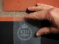 Шведы изобрели прозрачную древесину