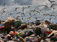 ВРоссии хотят увеличить втрое объем переработки твердых бытовых отходов