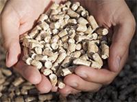 Липецкий завод попроизводству древесных гранул намерен вразы увеличить свои мощности