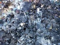 Экологи обнаружили незаконный полигон опасных строительных отходов наТроещине