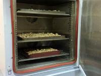 ВКрасноярске создана экспериментальная установка дляполучения биопродукции издревесины