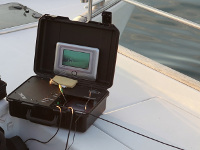 Сезон мониторинга среды обитания водных ресурсов начался наДону