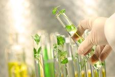 «Зеленые» технологии, разрабатываемые вТПУ, сделают производство фармпрепаратов безопаснее идешевле