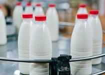 НаВологодчине будут делать молочные продукты сприменением нанотехнологий