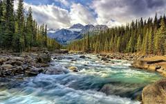 Четыре особо охраняемые природные территории создадут вЗабайкалье вГод экологии