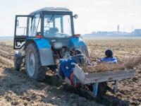 Стойленский ГОК присоединился кобластной программе «Зеленая столица»