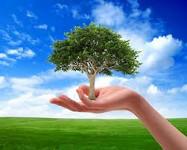 Утверждена стратегия экологической безопасности страны напериод до2025года