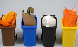 Видео дня: есть ли смысл всортировке мусора вРоссии?