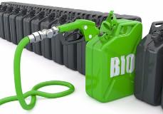 ВРоссии может появиться новая отрасль— альтернативное топливо