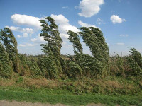 ВРоссии отмечается день ветра
