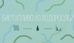 Биотопливо изводорослей