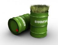 Ученые создали метод переработки канализационных осадков вбиотопливо