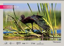 Ваэропорту «Шереметьево» откроется фотовыставка, посвящённая красоте российских заповедников