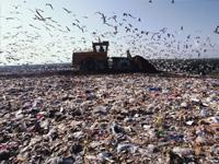 Деньги непахнут: как частный бизнес осваивает «мусорный» сегмент