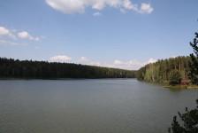 ВПензе представители 16 субъектов РФ рассмотрят вопросы сохранения водных ресурсов