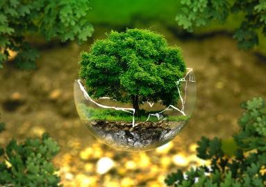 Презентация рейтинга экологической ответственности нефтегазовых компаний Казахстана
