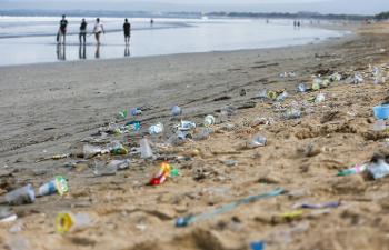 Еврокомиссия намерена запретить одноразовые пластиковые стаканчики, тарелки итрубочки