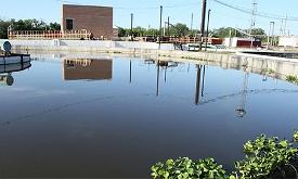 Биоочистка как тренд. НаНовокуйбышевском НПЗ Роснефти запущена инновационная экологичная технология водоочистки
