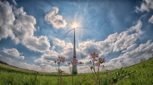 Как изменение цен нанефть влияет наразвитие возобновляемой энергетики?