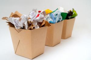Разработан механизм распределения субсидий наприобретение контейнеров дляраздельного сбора отходов