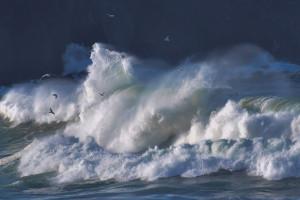 Загрязнение Атлантического океана вразы больше, чем предполагалось