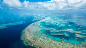 Экологи построили глобальную карту антропогенного влияния намировой океан