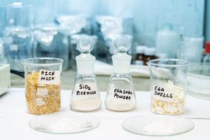 Кости изриса: разработан дешевый иэкологически чистый метод преобразования сельхозотходов вбиоматериалы