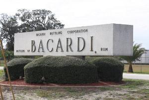 BACARDI разработали бутылку дляспиртных напитков из100% биоразлагаемых материалов
