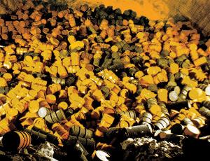 Белорусские ученые разрабатывают методы очистки радиоактивных отходов