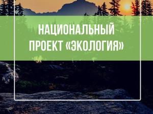 Росатом подвел итоги реализации нацпроекта «Экология» в2020году