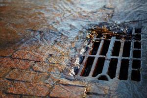 Ученые СПбПУ изобрели экологичные фильтры, которые можно применять дляочистки дождевых стоков