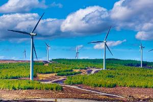 Калмыкия будет первым российским углеродно-нейтральным регионом
