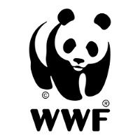 За5 лет Минприроды Кубани назначило незаконные рубки почти на200 участках охраняемых лесов