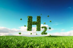 Enel иРоснано обсудили взаимодействие всфере производства «Зеленого» водорода наПМЭФ-2021