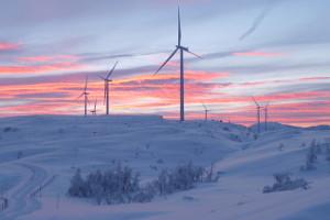 ВРоссии стали более активно использовать энергию ветра