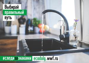 Бренды компании P&G поддержали акцию WWF России «День экодолга 2021», став генеральным партнером этой инициативы