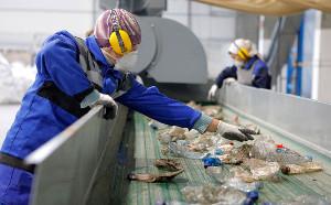 Всоздание мусороперерабатывающего комплекса наКубани вложат ₽980 млн